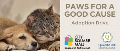 Paws for A Good Cause – Dogs and Cats Adoption: CANCELLED