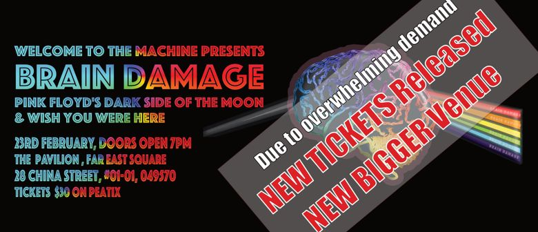 Brain Damage by Welcome To The Machine
