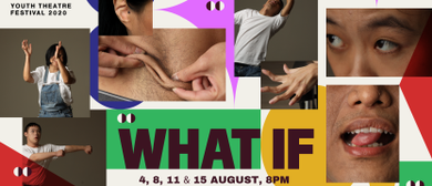 M1 Peer Pleasure Youth: What If