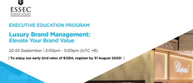 Luxury Brand Management Workshop: Elevate Your Brand Value